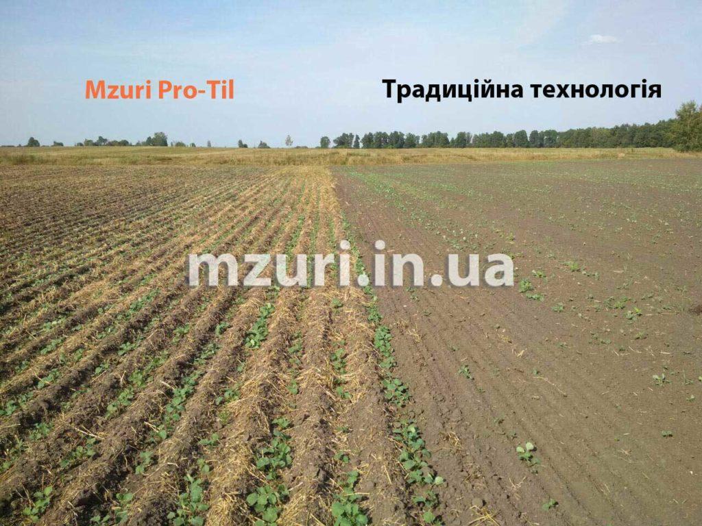 Порівняння посівів ріпаку за традиційною технологією і Strip-Till від Mzuri Pro-Til