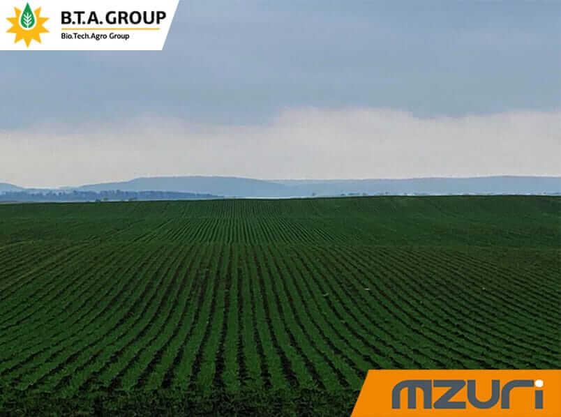 Озима пшениця сезону 2020/2021