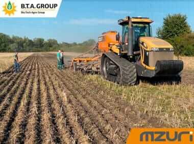 Озима пшениця сезон 2020/2021